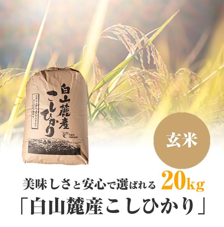 白山麓産こしひかり玄米20kg