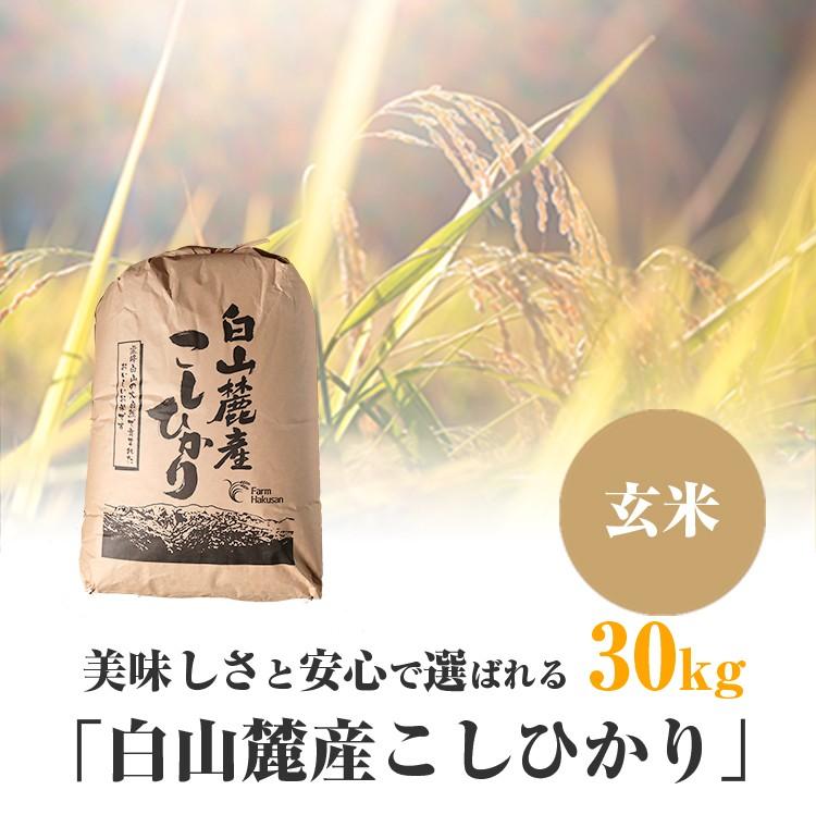 白山麓産こしひかり玄米30kg