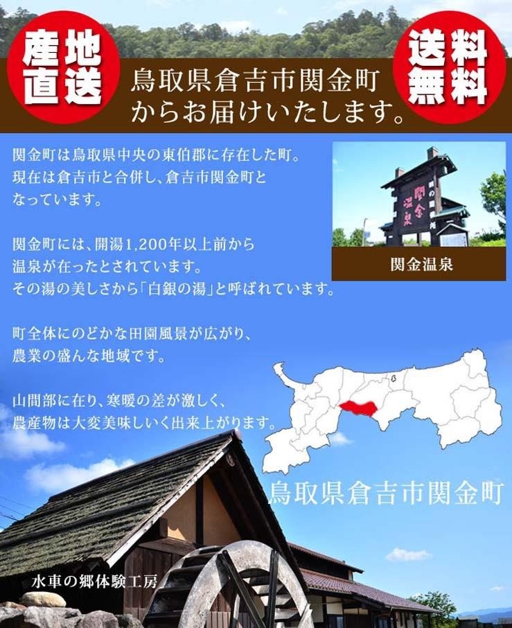 鳥取県倉吉市関金町産