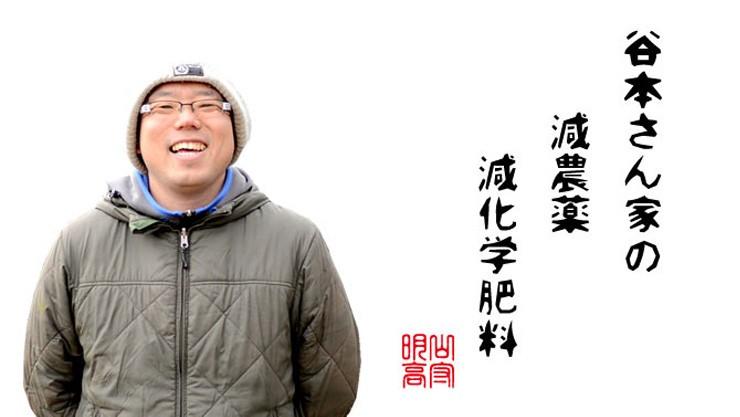 谷本さん家のお米シリーズ