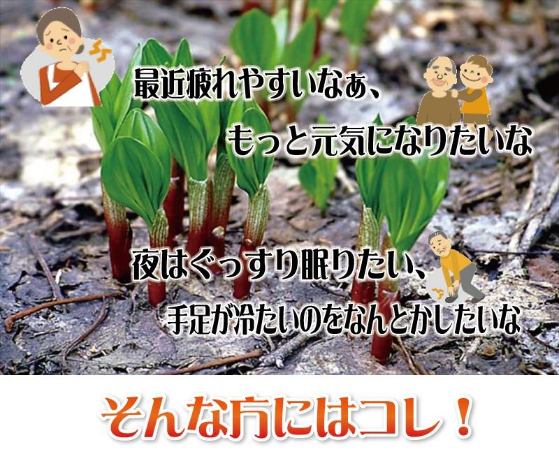 最近疲れやすいなー、もっと元気になりたい、そんな方におすすめ!北海道謹製 行者ニンニク卵黄油黒玉EX
