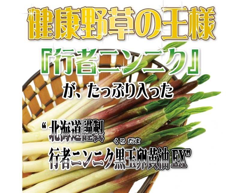 健康野草の王様「行者ニンニク」がたっぷり入った北海道謹製行者ニンニク卵黄油黒玉EX