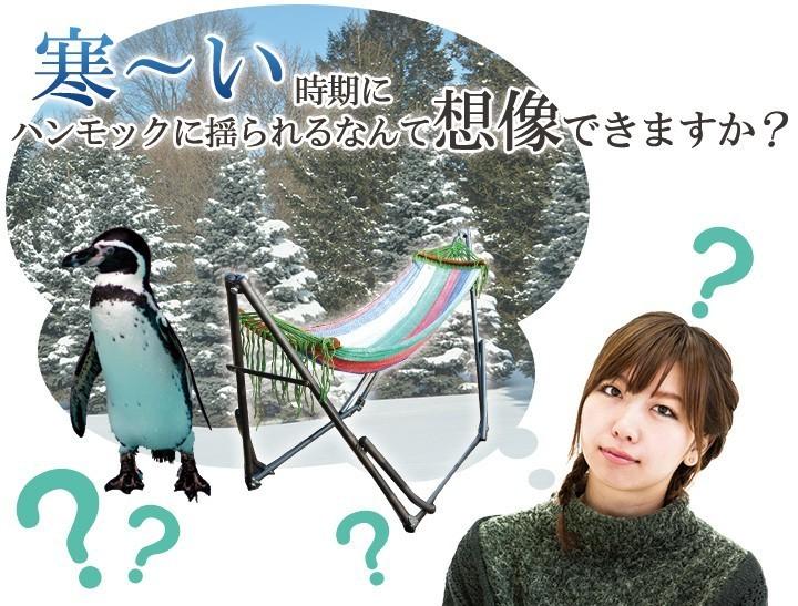 寒い時期にハンモックに揺られるなんて想像できますか?
