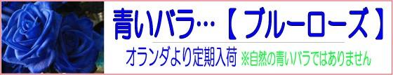 青いバラ …ブルーローズ 当店より直送にてお届け