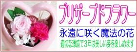 永遠に咲く魔法の花 プリザーブドフラワー 当店より直送にてお届け