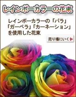 レインボーローズ … 七色の花弁を持つ花…レインボーローズ・レインボーカーネーション・レインボーガーベラ 当店より直送にてお届け