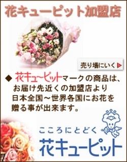 花キューピットでお届けするフラワーギフト