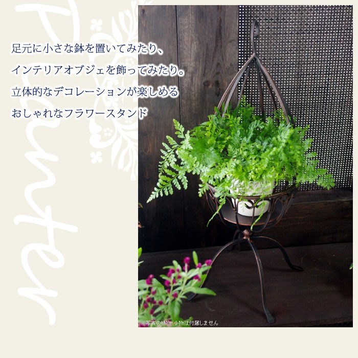 足元に小さな鉢を置いてみたり、インテリアオブジェを飾ってみたり。立体的なデコレーションが楽しめるおしゃれなフラワースタンド