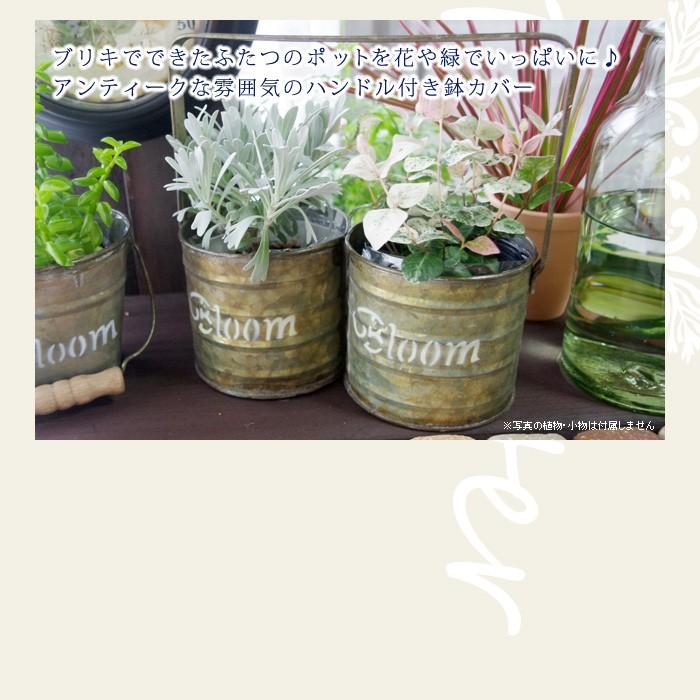 ブリキでできたふたつのポットを花や緑でいっぱいに♪アンティークな雰囲気のハンドル付き鉢カバー