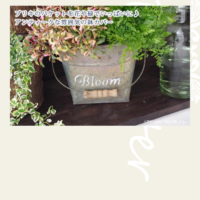 ブリキのバケットを花や緑でいっぱいに♪アンティークな雰囲気の鉢カバー