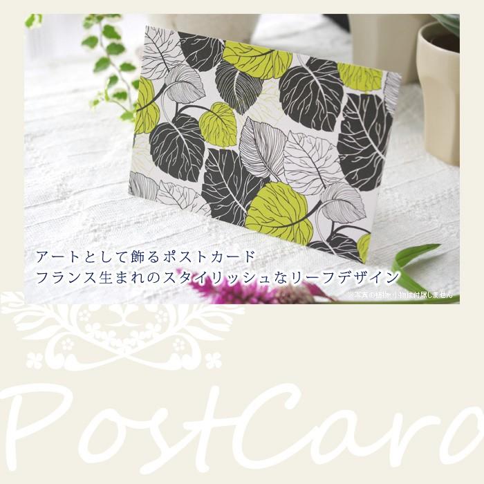 アートとして飾るポストカード。フランス生まれのスタイリッシュなリーフデザイン