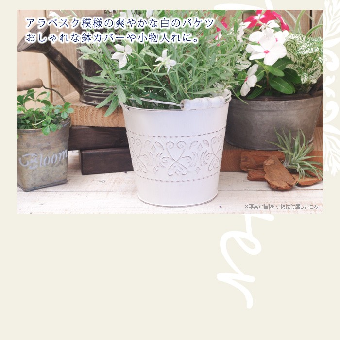 アラベスク模様の爽やかな白のバケツ。おしゃれな鉢カバーや小物入れに。