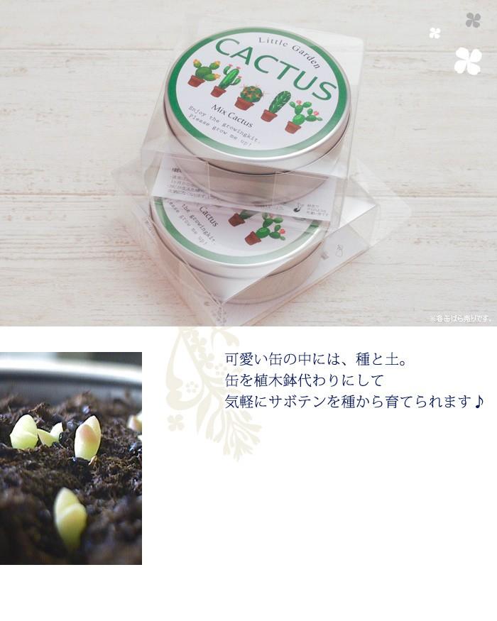 可愛い缶の中には、種と土。缶を植木鉢代わりにして気軽にサボテンを種から育てられます♪
