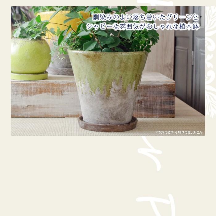 馴染みのよい落ち着いたグリーンとシャビーな雰囲気がおしゃれな植木鉢