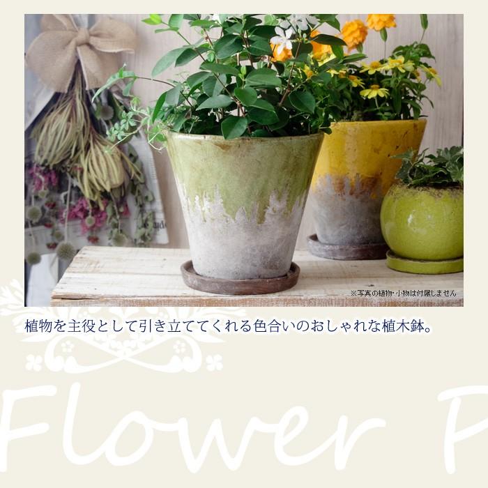 植物を主役として引き立ててくれる色合いのおしゃれな植木鉢