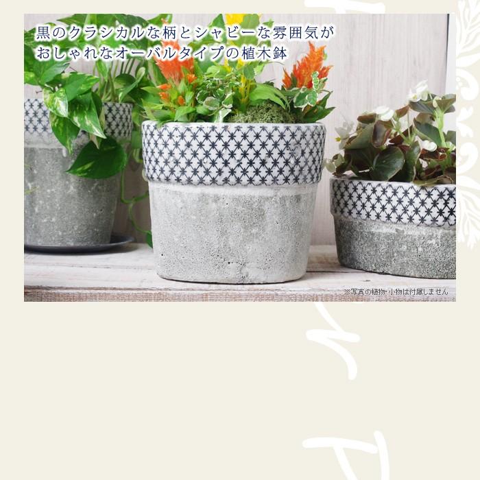 黒のクラシカルな柄とシャビーな雰囲気がおしゃれなオーバルタイプの植木鉢