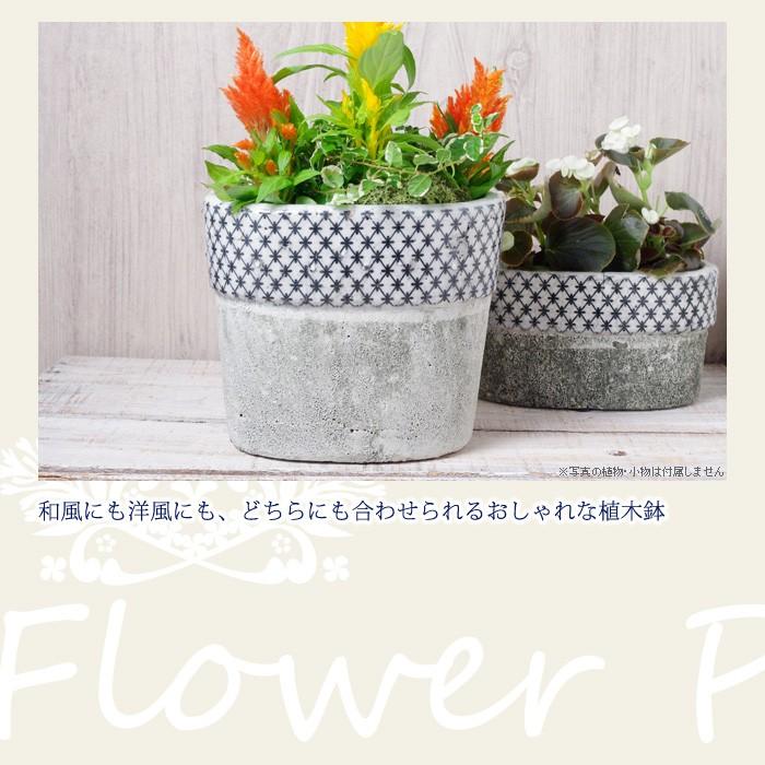 和風にも洋風にも、どちらにもあわせられるおしゃれな植木鉢
