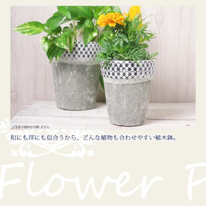 和にも洋にも似合うから、どんな植物も合わせやすい植木鉢