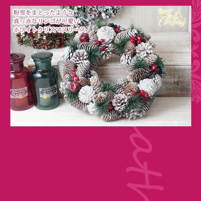 粉雪をまとったような、真っ赤な林檎が可愛いホワイトクリスマスリース