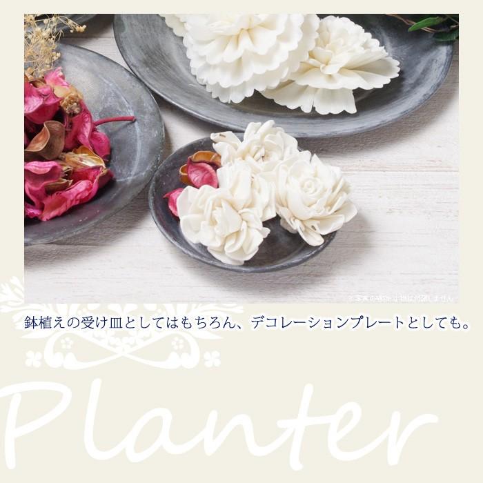 鉢植えの受け皿としてはもちろん、デコレーションプレートとしても。