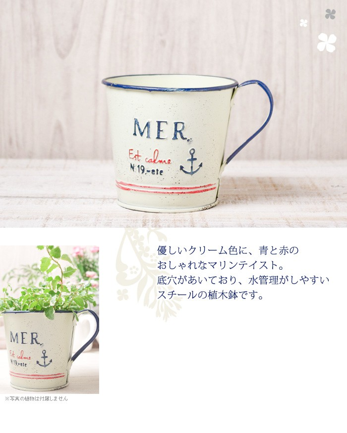 優しいクリーム色に、青と赤のマリンテイスト。底穴があいており、水管理がしやすいスチールの植木鉢です