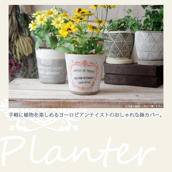 手軽に植物を楽しめるヨーロピアンテイストのおしゃれな鉢カバー