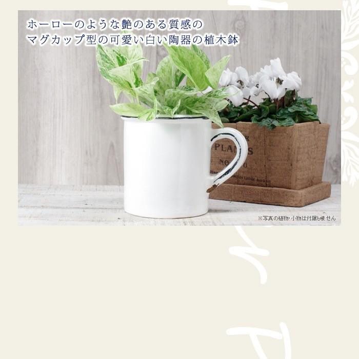 ホーローのような艶のある質感のマグカップ型の可愛い白い陶器の植木鉢