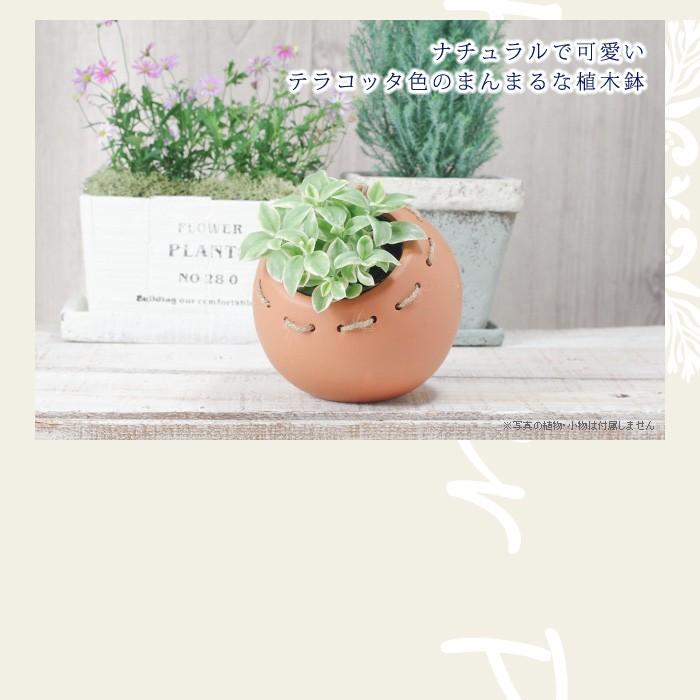 ナチュラルで可愛いテラコッタ製のまんまるな植木鉢