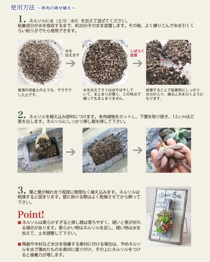 使用方法〜多肉の寄せ植え〜