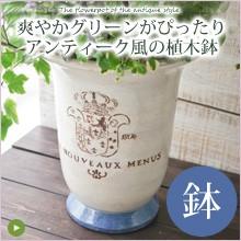 爽やかグリーンが良く似合うアンティーク風植木鉢