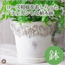 ローズ模様をあしらったエレガントな植木鉢
