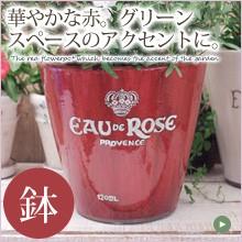 華やかな赤の陶器鉢。グリーンスペースのアクセントに