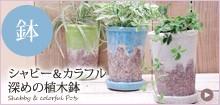 カラフル&シャビーな深鉢タイプの植木鉢
