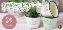 多肉植物の鉢カバーに。ホーローカップ
