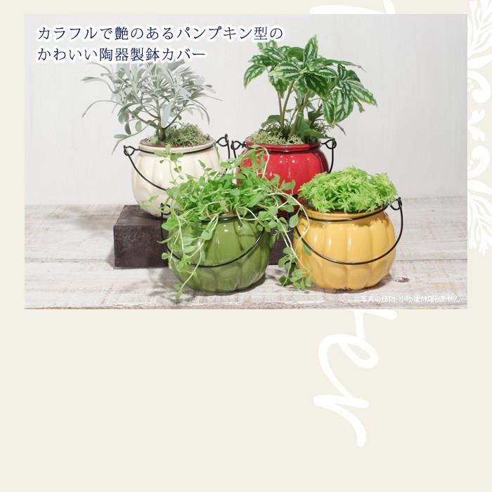 カラフルで艶のあるパンプキンの形の可愛い陶器製鉢カバー