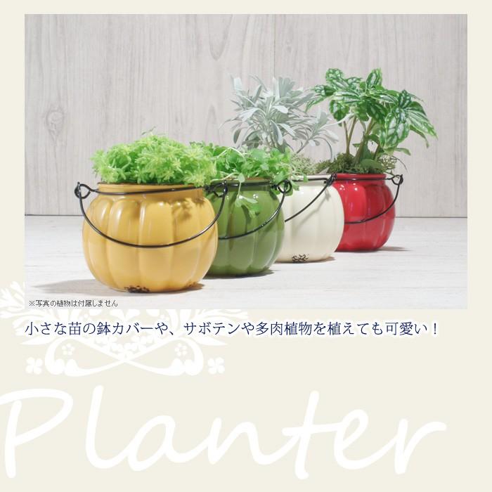 小さな苗の鉢カバーや、サボテンや多肉植物を植えても可愛い!