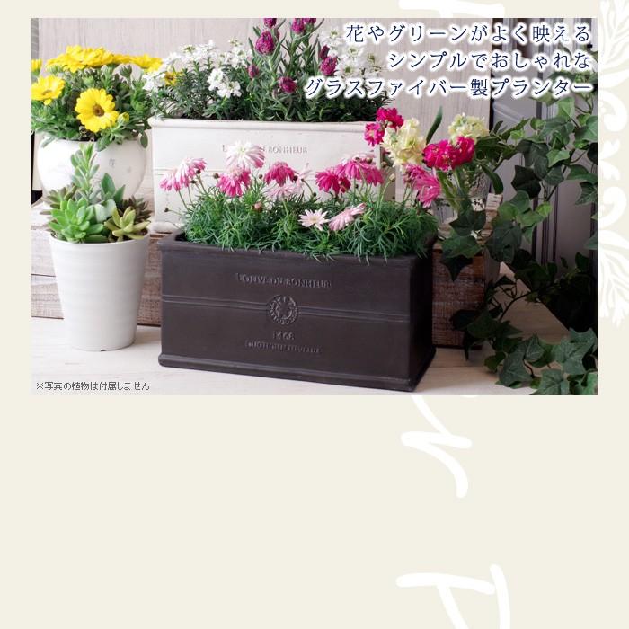 花やグリーンがよく映えるシンプルでおしゃれなグラスファイバー製プランター