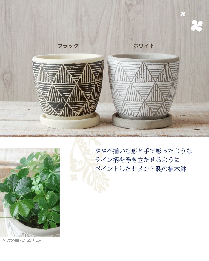 やや不揃いな形と手で彫ったようなライン柄を浮き立たせるようにペイントしたセメント製の植木鉢