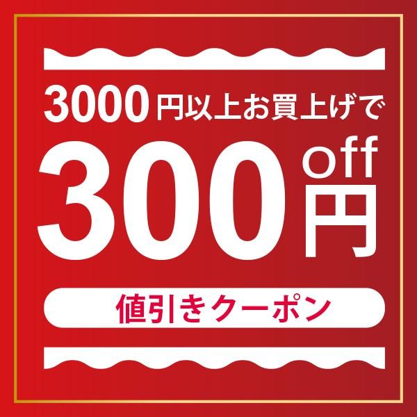 ★300円OFFクーポン★