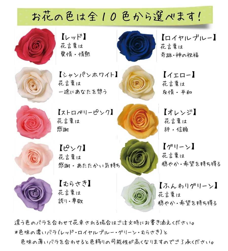 12本 バラ
