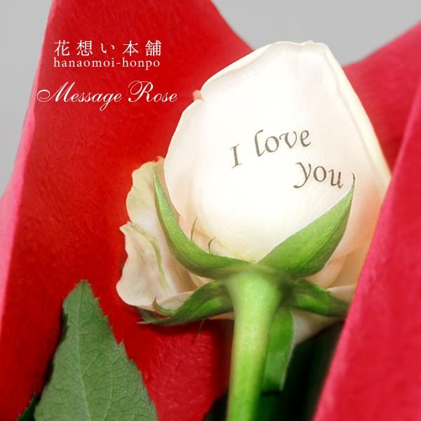 メッセージローズ1輪 25文字以内で花弁にメッセージを印字できる薔薇