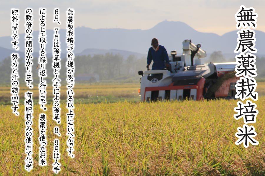あきたこまち無農薬栽培米