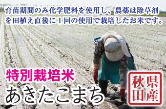 特別栽培米あきたこまち
