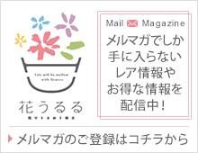 花うるる〜花でうるおう毎日のメルマガ登録