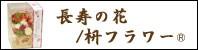 長寿の花 /枡フラワー