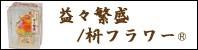 益々繁盛 /枡フラワー