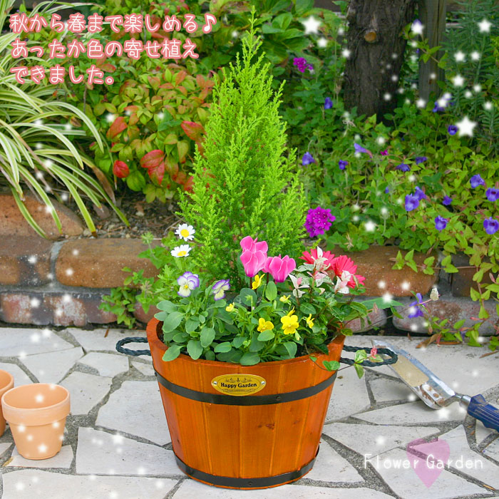 花鉢 寄せ植え 春まで楽しめる寄せ植え ガーデニング ...