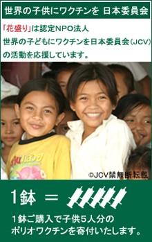 世界の子どもにワクチンを日本委員会(JCV)」の活動を応援