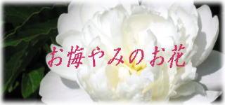 お悔やみ・仏花プリザーブド