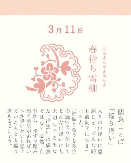 3月11日 春待ち雪柳(はるまちゆきやなぎ)
